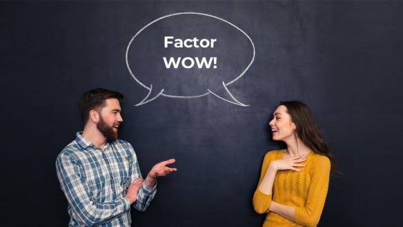 factor wow